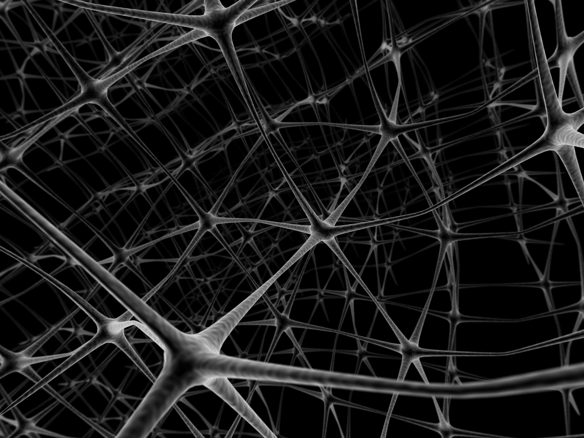 Plasticidad neuronal y logopedia