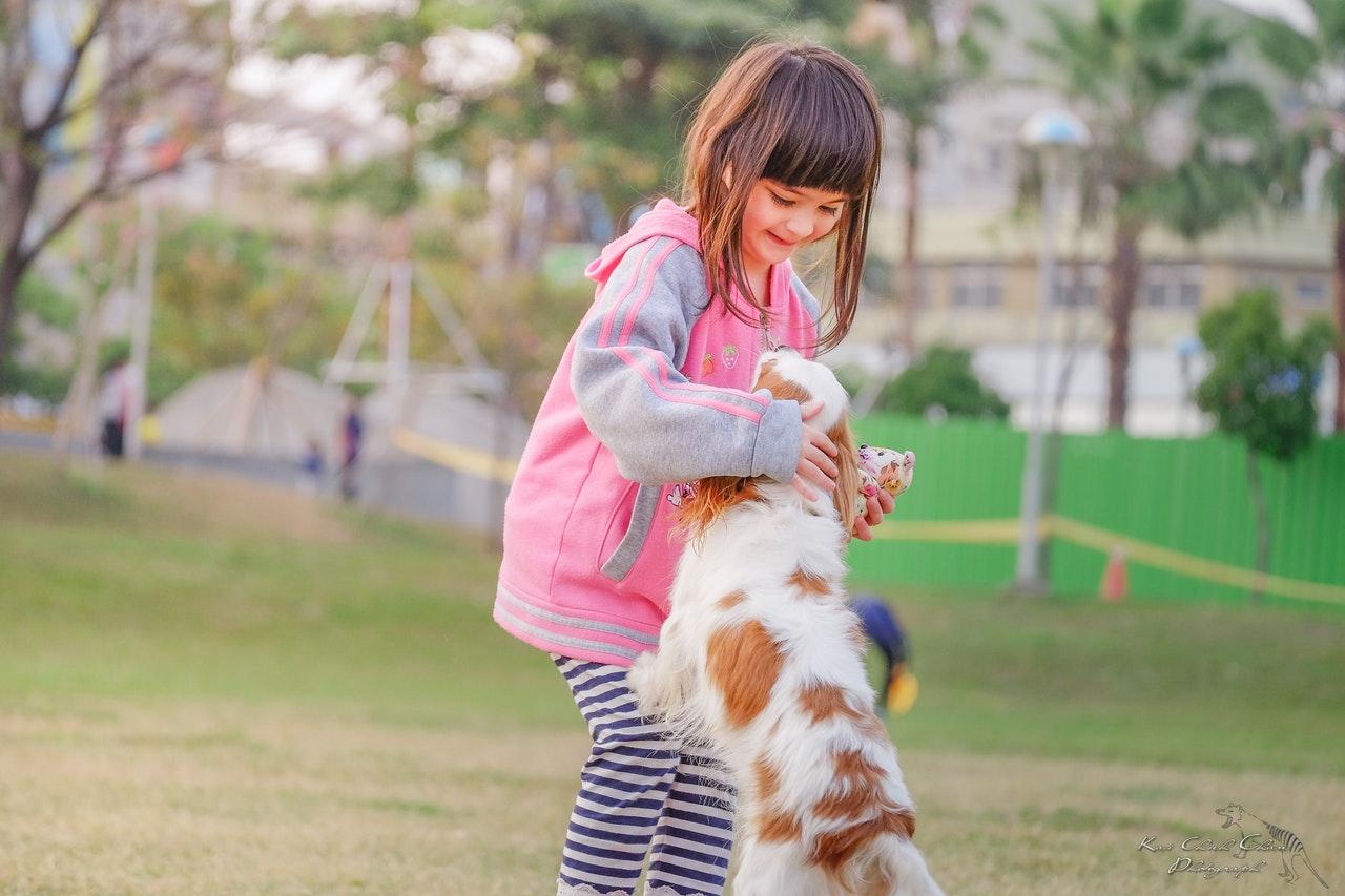 Terapia Asistida con Animales, una nueva dimensión en Logopedia